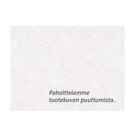 Johdinside 290X3.5MM Valkoinen /100
